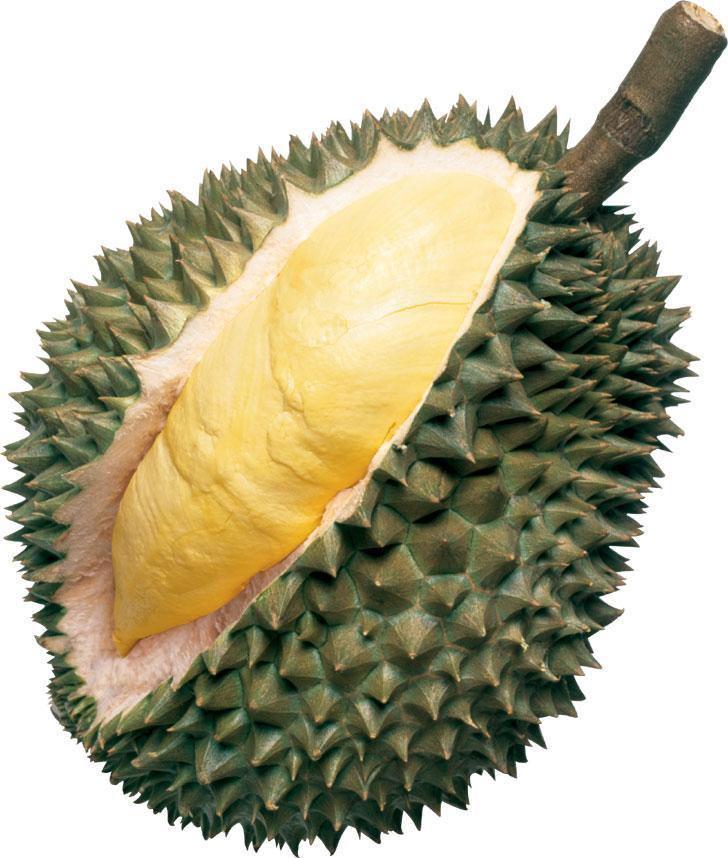 http://www.nurulrahman.com/blog/wp-content/uploads/2008/01/durian.jpg